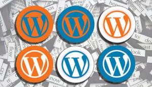 Wordpress Custom Solutions